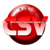 CSV INTL. PLACEMENT AGENCY INC