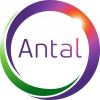 Antal International Executive Recruitment